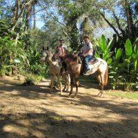 Horse-riding1
